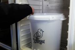 15-6-fermentation-3-800